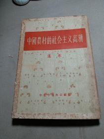 中国农村的社会主义高潮