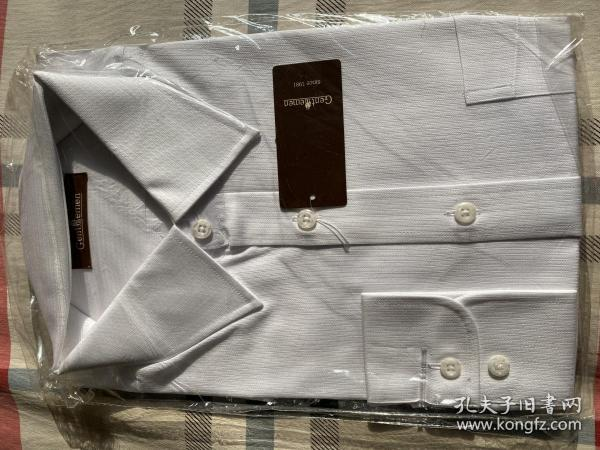 绅士男衬衫(41)