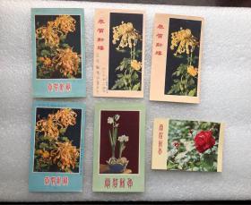 60年代花卉新年贺卡,菊花,水仙花,红玫瑰,丹凤菊花,河北人民美术出版社,6张合售。