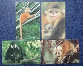 中国电信电话卡:IC-23珍稀动物(4枚全套)