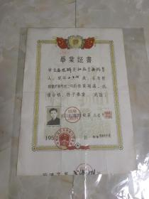 1956年电力工业部上海动力学校毕业证书看图