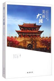 美丽大理中国百名文化记者大理采风征文集