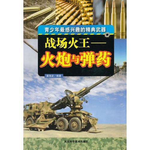 战场火王——火炮与弹药