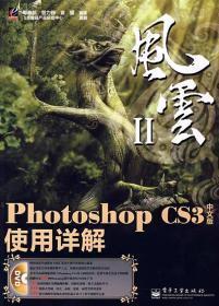 Photoshop CS3中文版使用详解