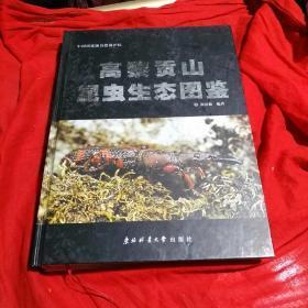 中国国家级自然保护区:高黎贡山昆虫生态图鉴,大16开,精装,厚册彩图!