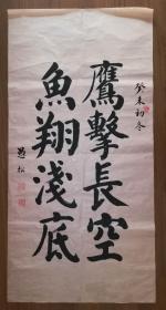 手书真迹书法:耿仲敭弟子王化山楷书《鹰击长空 鱼翔浅底》