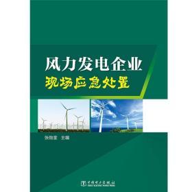 风力发电企业现场应急处置