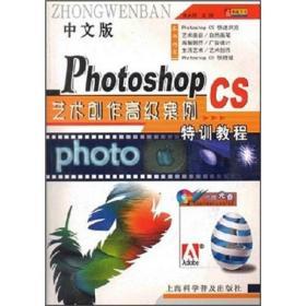 中文版PhotoshopCS艺术创作高级案例特训教程(含盘一张)