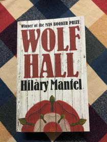 2009年布克奖获奖作品英文原著:Wolf Hall
