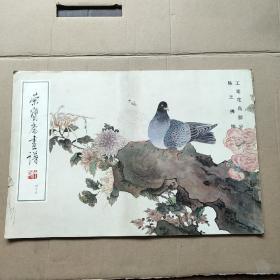 荣宝斋画谱45 (工笔花鸟部分)