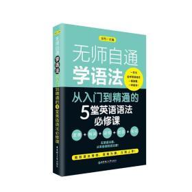 全新正版  无师自通学语法:从入门到精通的5堂英语语法必修课