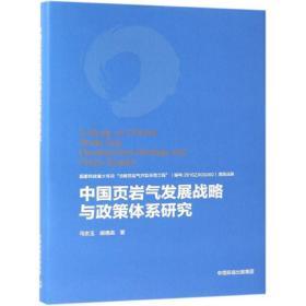 中国页岩气发展战略与政策体系研究(精装)