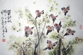 浙江著名画家 张万琪 春到枝头 花鸟横幅 手绘国画