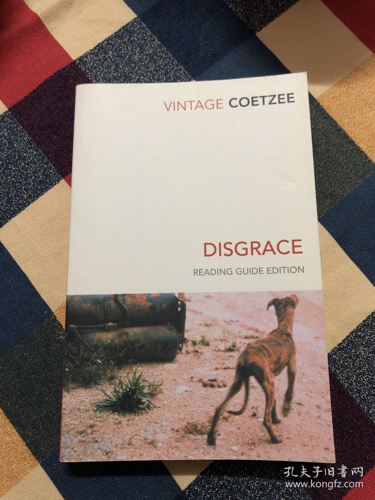 1999年布克奖获奖作品英文原著:Disgrace