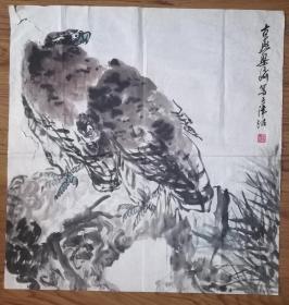 手绘梁崎款《鹰》