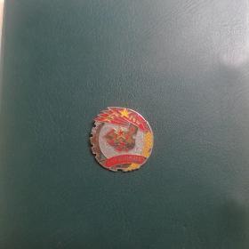 解放西南胜利纪念(章)