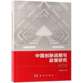 中国创新战略与政策研究.2019
