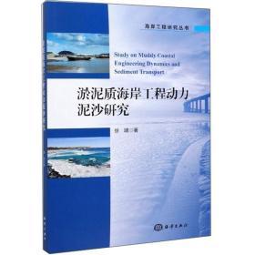 淤泥质海岸工程动力泥沙研究/海岸工程研究丛书