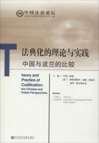 法典化的理论与实践 中国与波兰的比较