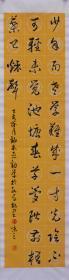 【自写自销】中国当代艺术家协会副主席,黄河文化书画院院士,中国孔子国际书画研究院首席画家王丞手写 !少年易老学难成19297