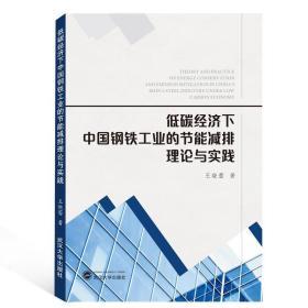 低碳经济下中国钢铁工业的节能减排理论与实践武汉大学王晓蕾9787307123816