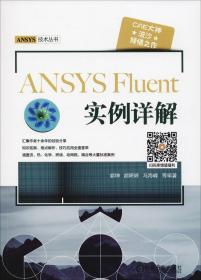 ANSYS Fluent 实例详解