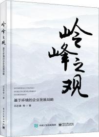 岭峰之观 基于环境的企业发展战略