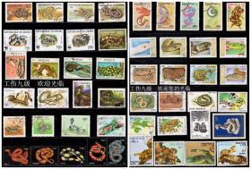 50枚外国蛇邮票,票面精美,无重复!请注意图片及说明