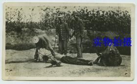 民国处死罪犯老照片,慎入。