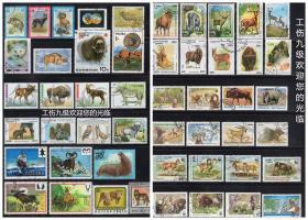【50枚外国野生动物邮票】,票面精美,无重复!请注意图片及说明