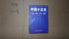 中国小企业:分析、策划、运作、创新