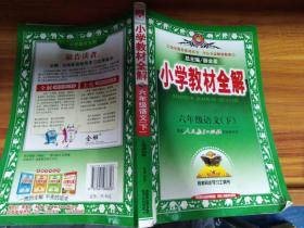 小学教材全解:6年级语文(下)(人教课标版)