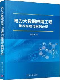 电力大数据应用工程技术原理与案例