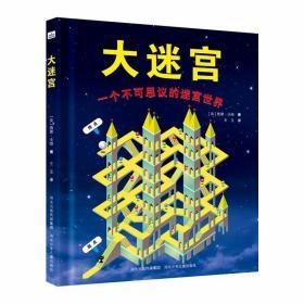 快乐星童书馆.益智游戏书:大迷宫-一个不可思议的迷宫世界 (精装)