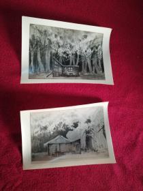 戏曲资料老照片……《智取威虎山》背景照片(2张)