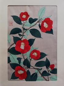 木版画 花卉 椿(山茶) 河原崎奖堂  芸艸堂(芸草堂)