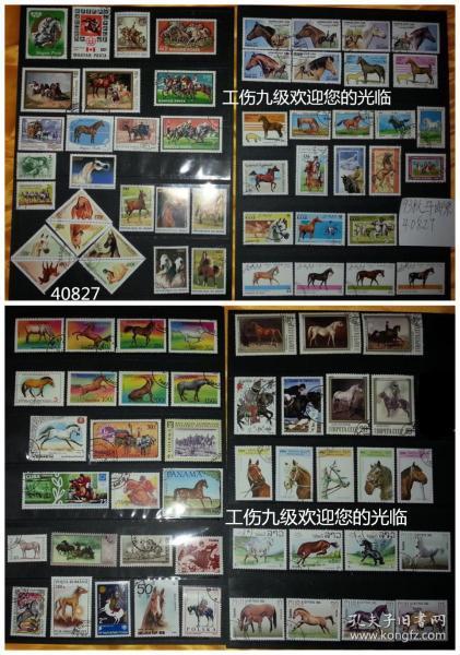 93张马专题外国邮票,票面精美,无重复!包含异性(三角)邮票6枚、大中型邮票占绝大部分,小邮票只有6枚,以便同大中型邮票比较大小。请注意图片及说明