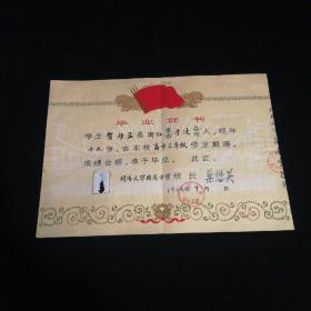 高中毕业证书(1964.7)