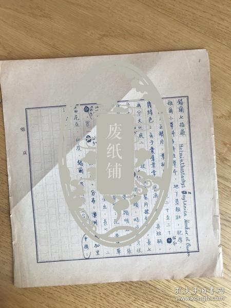 静生生物调查所旧藏——佚名民国时期植物谱手稿《锡兰七指蕨 》1页