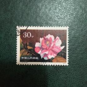 【邮票:老纪特 文革票 编号票 JT票】T37(10-6)