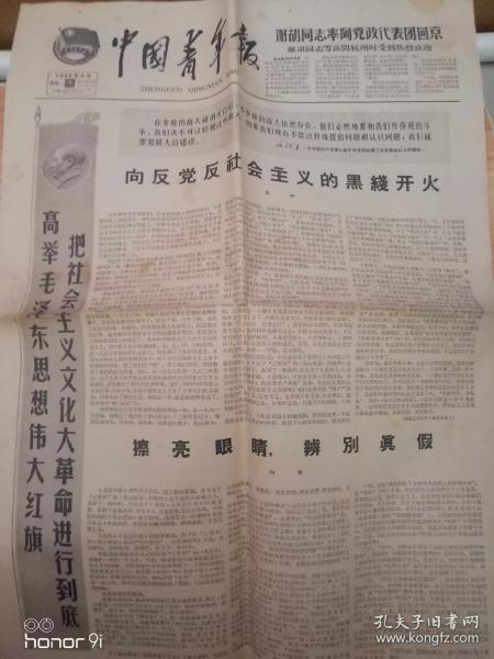 中国青年报1966年