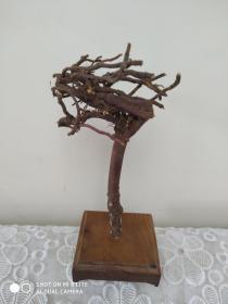 红豆杉根艺  飞龙在天  不加底座20cm  自制花梨木底座