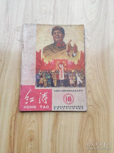 红涛 庆祝四川省革命委员会成立专刊 18