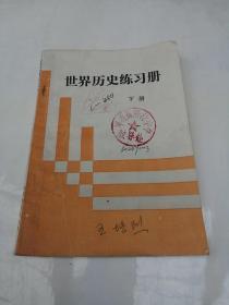 世界历史练习册下册