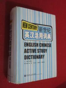 新世纪英汉活用词典 硬精装