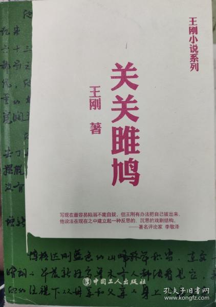 王刚小说系列:关关雎鸠