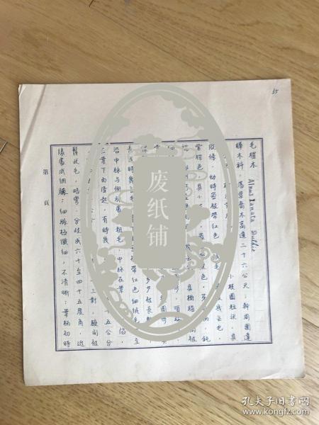 静生生物调查所旧藏——佚名民国时期植物谱手稿《毛桤木》2页