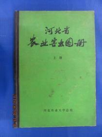 河北省农业害虫图册 上册 精装本