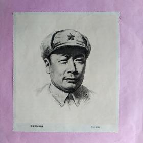 陈毅同志画像 ・素描