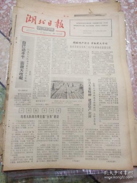 湖北日报农村版1965年2月16日(8开四版);梦家大队自力更生兴办当家地;生产队长张家岩带头做重活做定额活